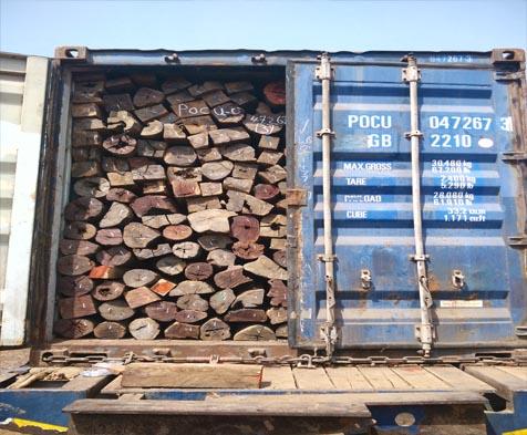 原木进口案例 铁木豆